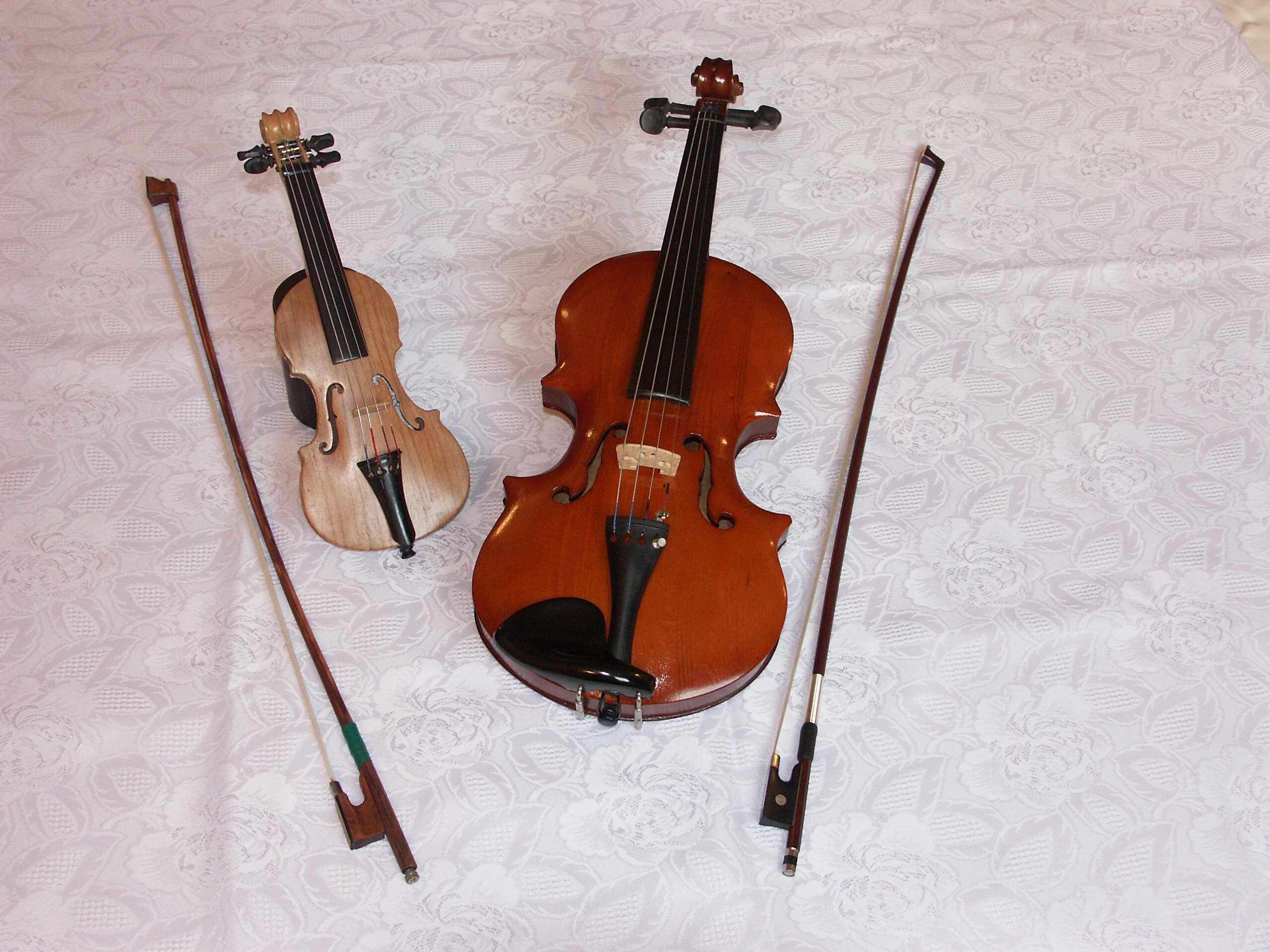Violini - Volpino piccolo ...